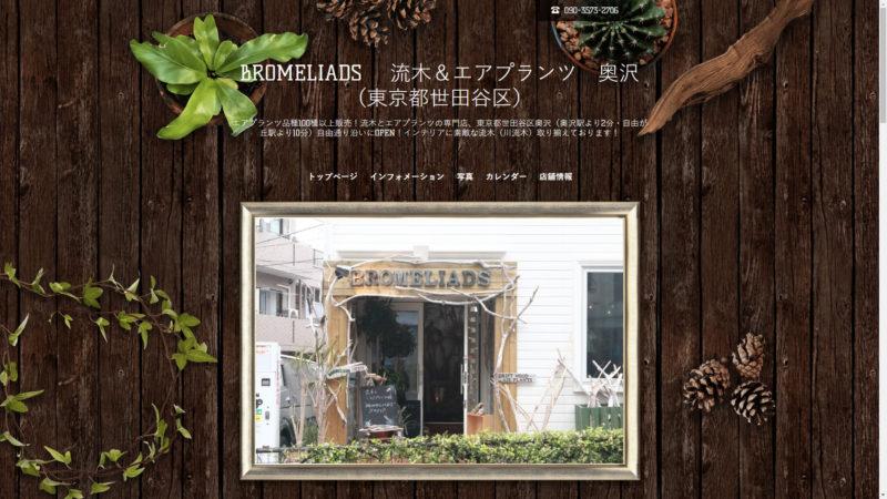 BROMELIADS  流木&エアプランツ 奥沢(東京都世田谷区)