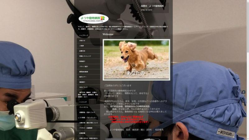 高岡市 よつや動物病院